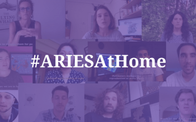 ARIES launches the video series #ARIESAtHome