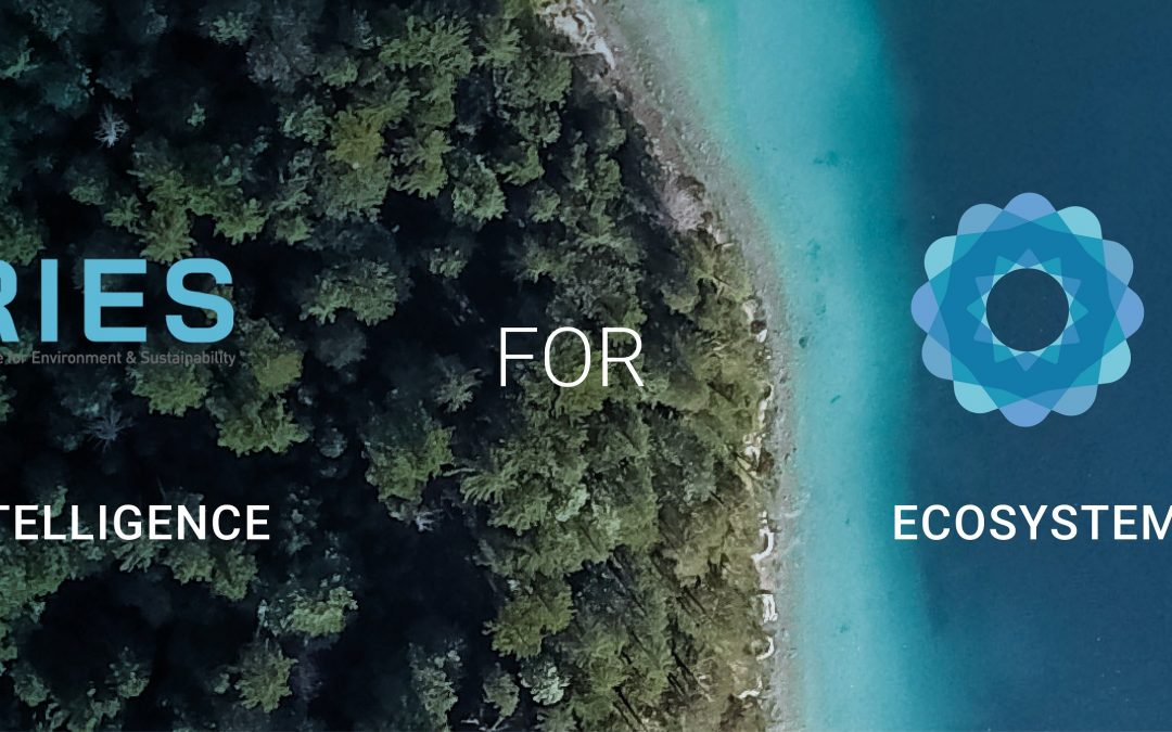UN and BC3 launch the first AI tool for rapid natural capital accounting – the ARIES for SEEA Explorer